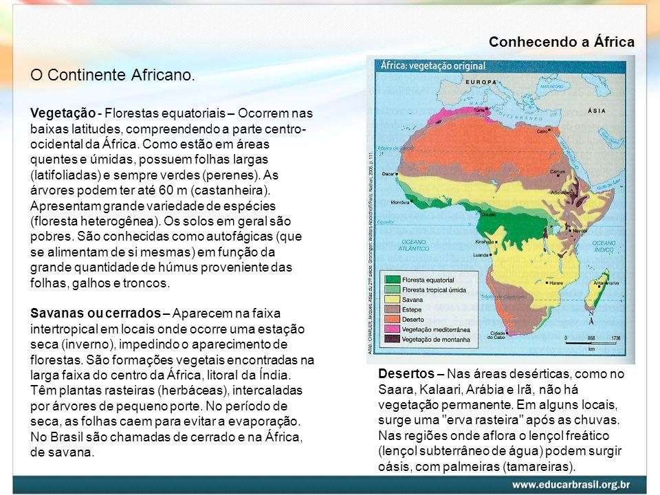 Vegetação - Florestas equatoriais – Ocorrem nas baixas latitudes, compreendendo a parte centro- ocidental da África. Como estão em áreas quentes e úmi