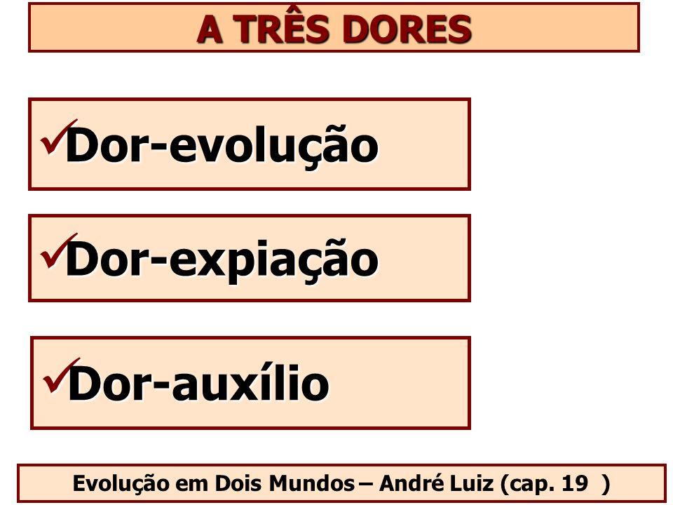 Evolução em Dois Mundos – André Luiz (cap. 19 ) Dor-evolução Dor-evolução A TRÊS DORES Dor-expiação Dor-expiação Dor-auxílio Dor-auxílio