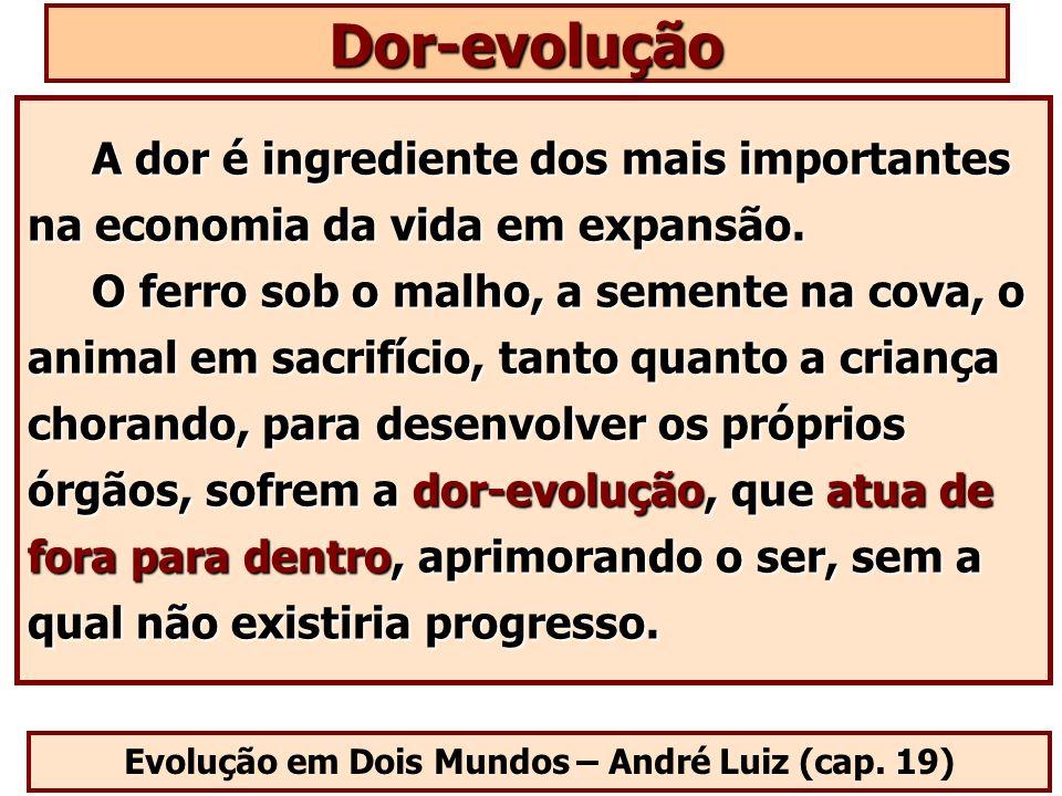 Evolução em Dois Mundos – André Luiz (cap. 19) A dor é ingrediente dos mais importantes na economia da vida em expansão. O ferro sob o malho, a sement