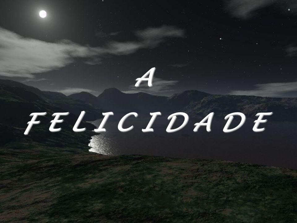 A F E L I C I D A D E