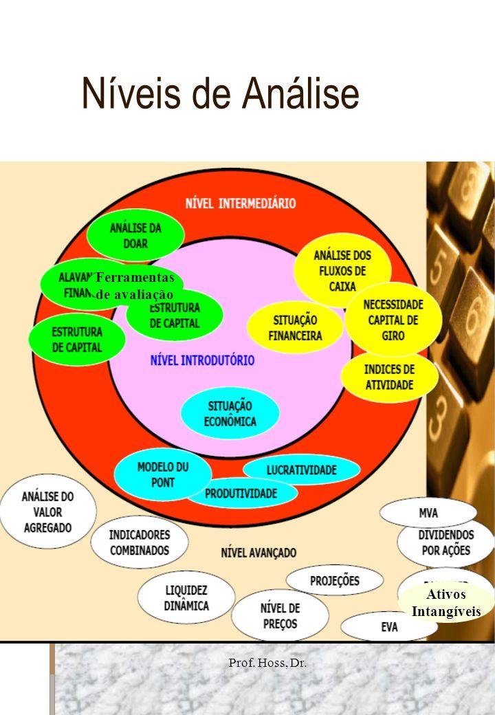 Prof. Hoss, Dr. Níveis de Análise Ativos Intangíveis Ferramentas de avaliação
