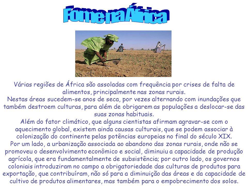 Várias regiões de África são assoladas com frequência por crises de falta de alimentos, principalmente nas zonas rurais.