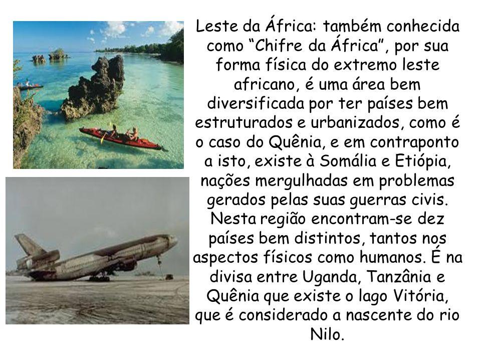 Leste da África: também conhecida como Chifre da África, por sua forma física do extremo leste africano, é uma área bem diversificada por ter países bem estruturados e urbanizados, como é o caso do Quênia, e em contraponto a isto, existe à Somália e Etiópia, nações mergulhadas em problemas gerados pelas suas guerras civis.