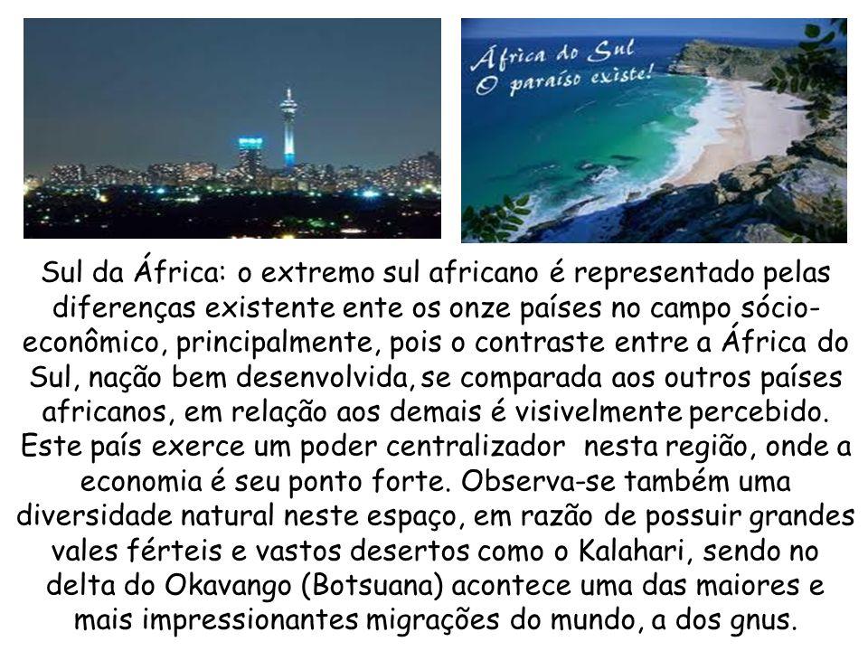 Leste da África: também conhecida como Chifre da África, por sua forma física do extremo leste africano, é uma área bem diversificada por ter países b