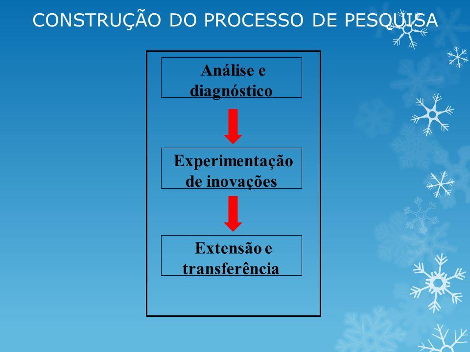 Análise e diagnóstico Experimentação de inovações Extensão e transferência CONSTRUÇÃO DO PROCESSO DE PESQUISA