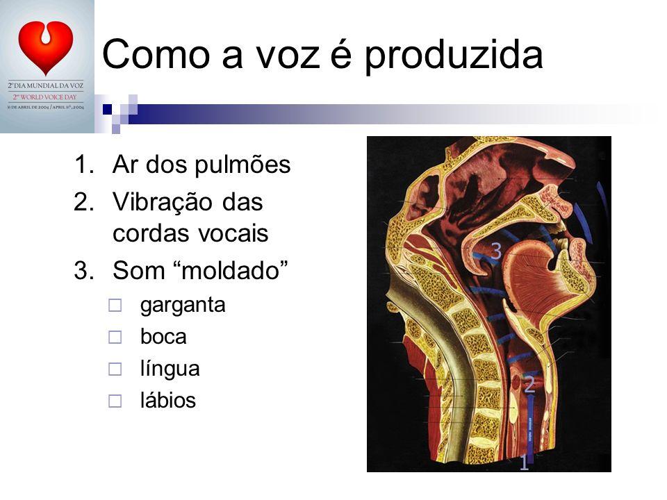 Como a voz é produzida 1.Ar dos pulmões 2.Vibração das cordas vocais 3.Som moldado garganta boca língua lábios 1 2 3