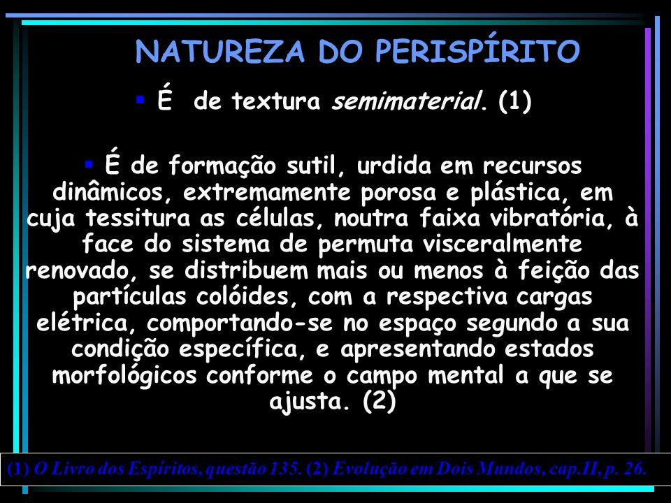 NATUREZA DO PERISPÍRITO É de textura semimaterial. (1) É de formação sutil, urdida em recursos dinâmicos, extremamente porosa e plástica, em cuja tess