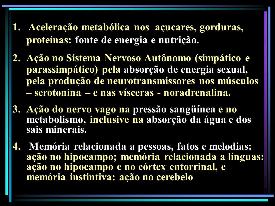 1. Aceleração metabólica nos açucares, gorduras, proteínas: fonte de energia e nutrição. 2.Ação no Sistema Nervoso Autônomo (simpático e parassimpátic