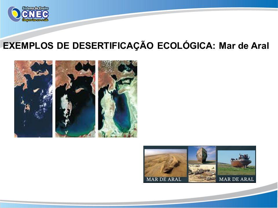 EXEMPLOS DE DESERTIFICAÇÃO ECOLÓGICA: Mar de Aral