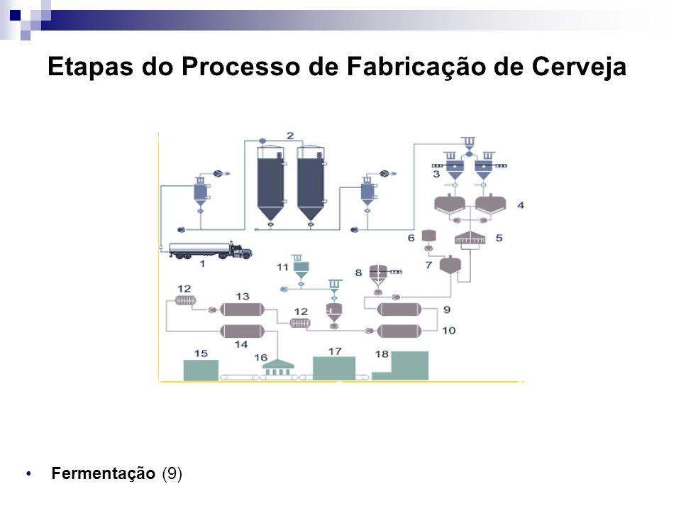 Etapas do Processo de Fabricação de Cerveja Fermentação (9)