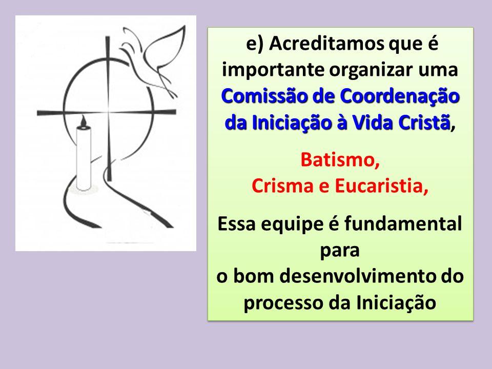 e) Acreditamos que é importante organizar uma Comissão de Coordenação da Iniciação à Vida Cristã da Iniciação à Vida Cristã, Batismo, Crisma e Eucaris