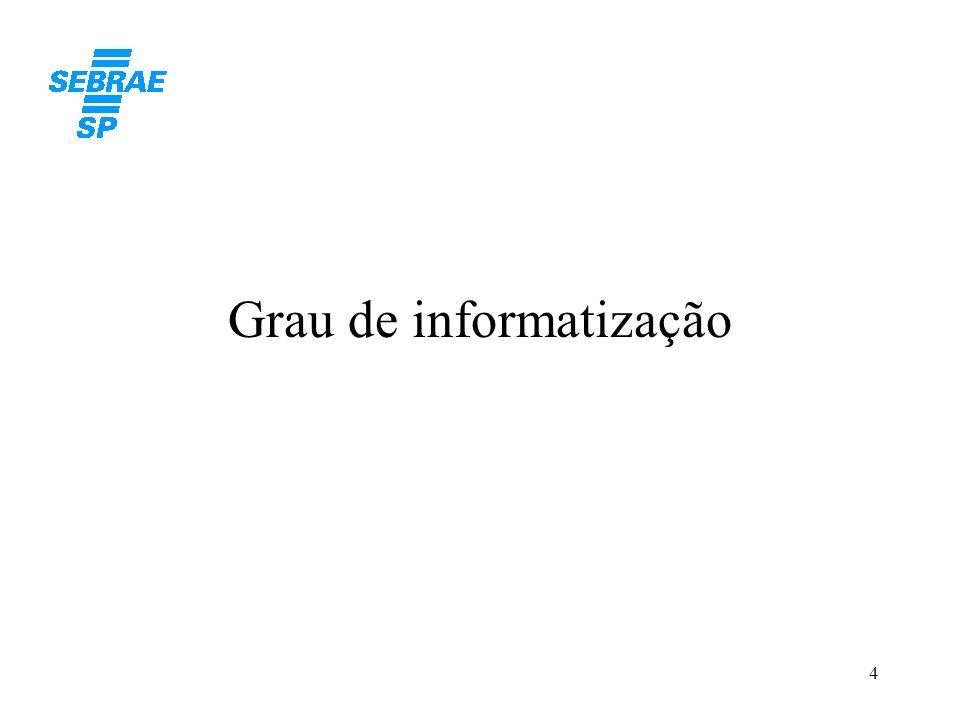 4 Grau de informatização