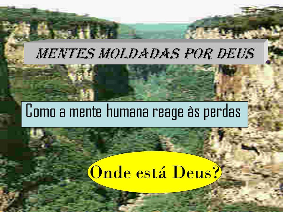 Lema e Título Mentes Moldadas por Deus Como a mente humana reage às perdas Onde está Deus?