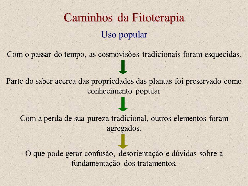 Caminhos da Fitoterapia Uso popular Com o passar do tempo, as cosmovisões tradicionais foram esquecidas. Parte do saber acerca das propriedades das pl