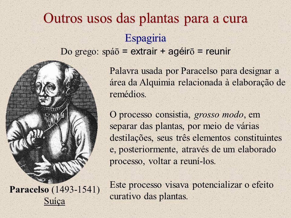 Outros usos das plantas para a cura Espagiria Do grego: spáō = extrair + agéir ō = reunir Palavra usada por Paracelso para designar a área da Alquimia