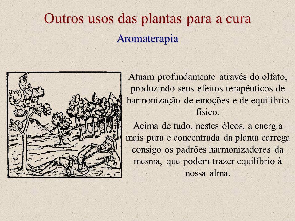 Aromaterapia Outros usos das plantas para a cura Acima de tudo, nestes óleos, a energia mais pura e concentrada da planta carrega consigo os padrões h