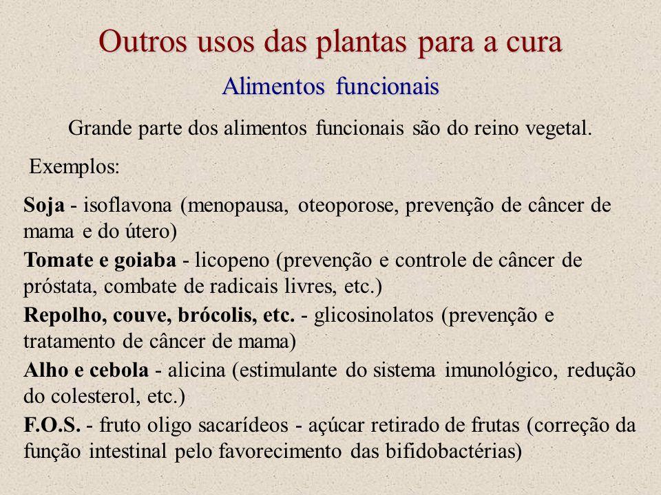Outros usos das plantas para a cura Alimentos funcionais Grande parte dos alimentos funcionais são do reino vegetal. Exemplos: Soja - isoflavona (meno