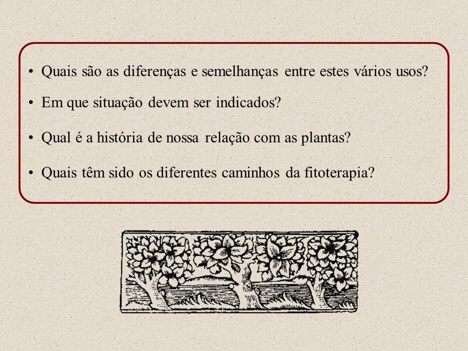 Quais são as diferenças e semelhanças entre estes vários usos? Em que situação devem ser indicados? Qual é a história de nossa relação com as plantas?