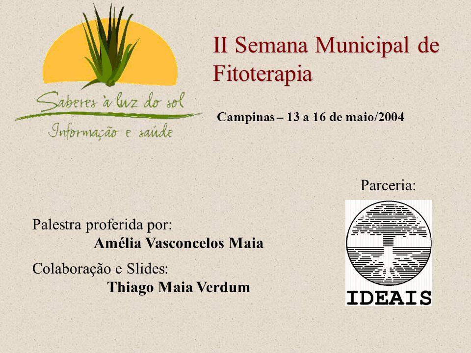Parceria: Palestra proferida por: Amélia Vasconcelos Maia Colaboração e Slides: Thiago Maia Verdum Campinas – 13 a 16 de maio/2004 II Semana Municipal