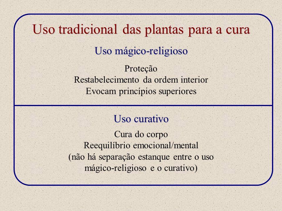 Uso tradicional das plantas para a cura Uso mágico-religioso Uso curativo Proteção Restabelecimento da ordem interior Evocam princípios superiores Cur