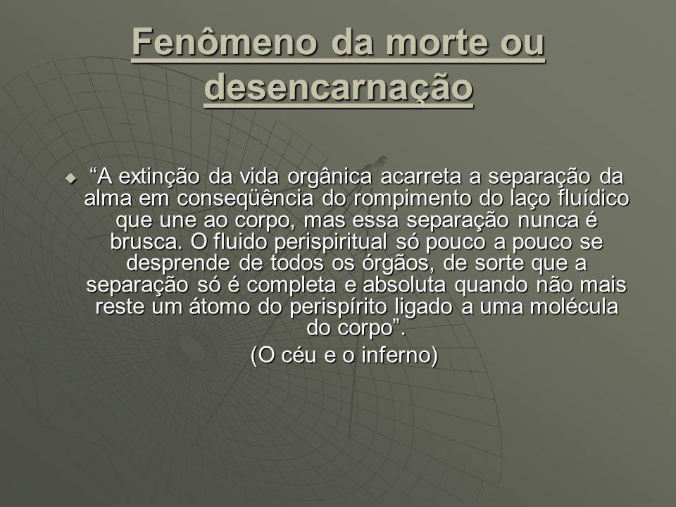 ETAPAS DA DESENCARNAÇÃO E SEU PARALELO COM A FISIOLOGIA DO DESENCARNE