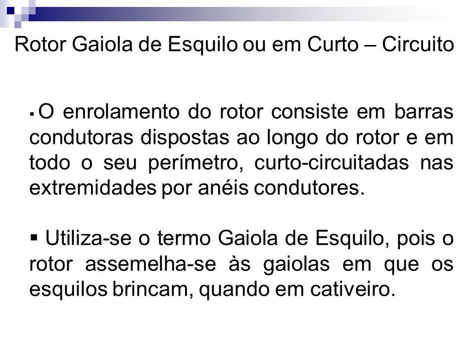 Rotor Gaiola de Esquilo ou em Curto – Circuito O enrolamento do rotor consiste em barras condutoras dispostas ao longo do rotor e em todo o seu períme