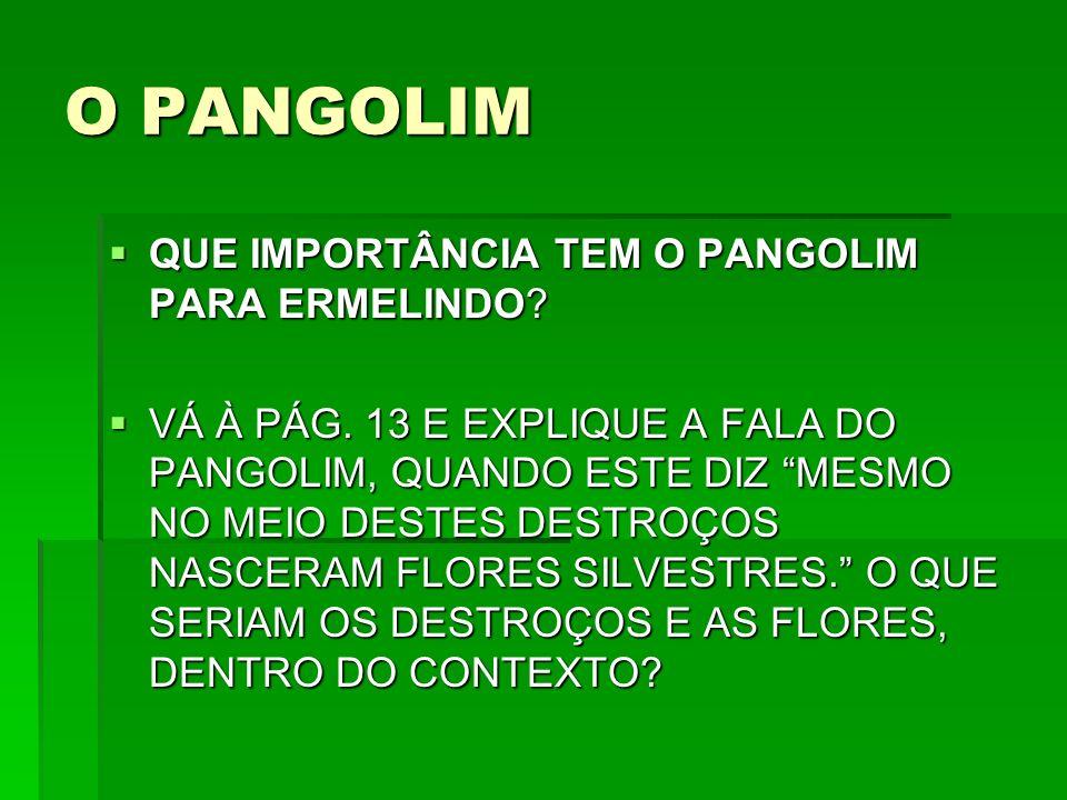 O PANGOLIM QUE IMPORTÂNCIA TEM O PANGOLIM PARA ERMELINDO.
