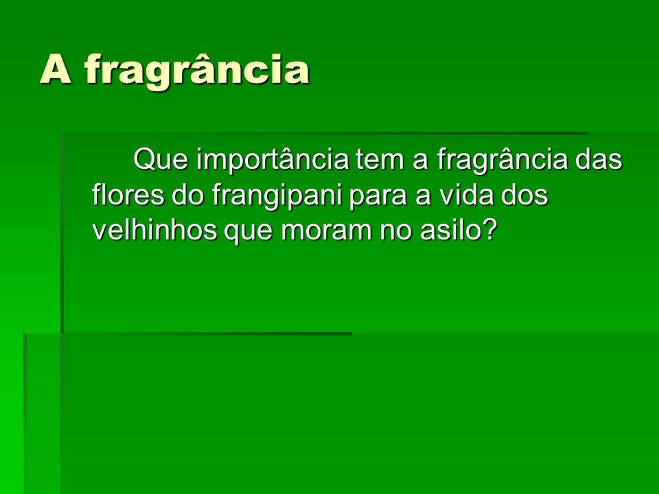 A fragrância Que importância tem a fragrância das flores do frangipani para a vida dos velhinhos que moram no asilo?