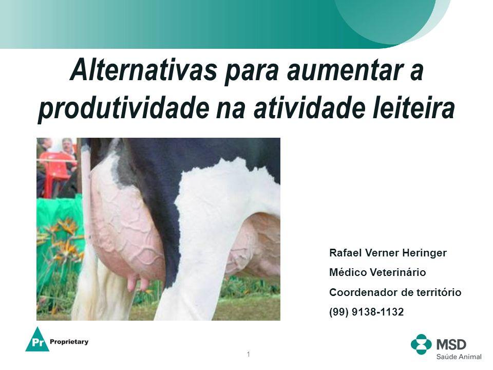 1 Alternativas para aumentar a produtividade na atividade leiteira Rafael Verner Heringer Médico Veterinário Coordenador de território (99) 9138-1132