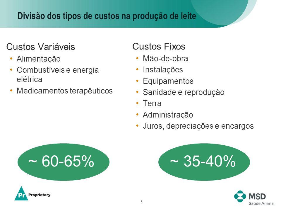 5 Divisão dos tipos de custos na produção de leite Custos Variáveis Alimentação Combustíveis e energia elétrica Medicamentos terapêuticos Custos Fixos