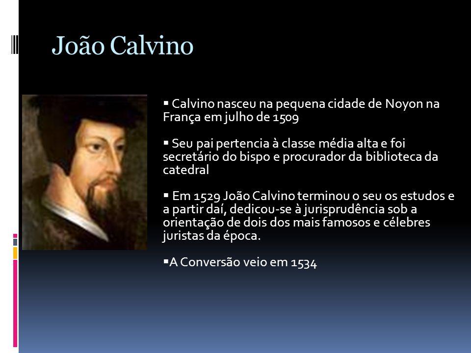 João Calvino Calvino nasceu na pequena cidade de Noyon na França em julho de 1509 Seu pai pertencia à classe média alta e foi secretário do bispo e pr