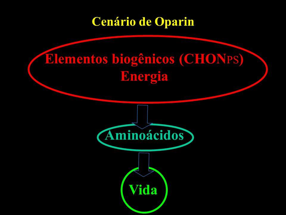 Cenário de Oparin Elementos biogênicos (CHON PS ) Energia Aminoácidos Vida