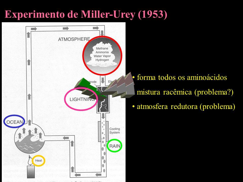 Experimento de Miller-Urey (1953) forma todos os aminoácidos mistura racêmica (problema?) atmosfera redutora (problema)