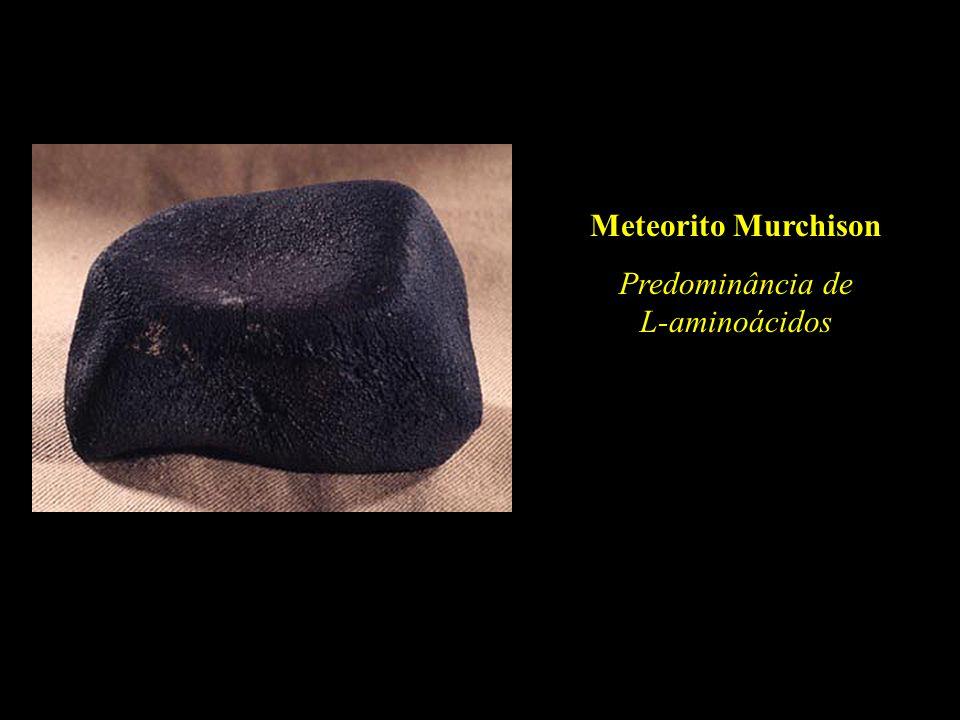 Meteorito Murchison Predominância de L-aminoácidos