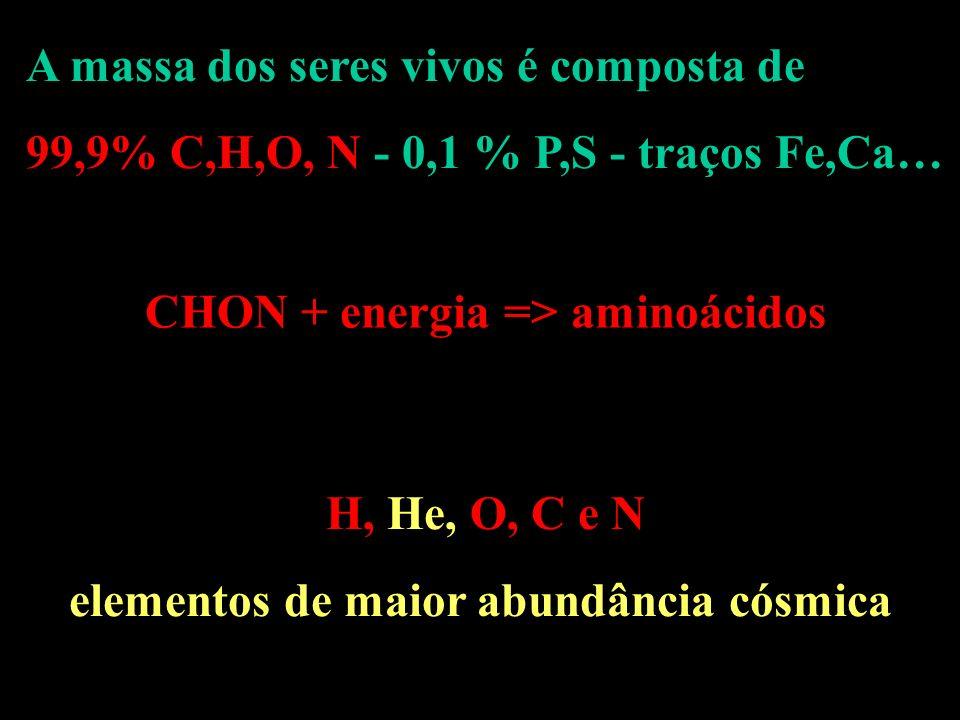 A massa dos seres vivos é composta de 99,9% C,H,O, N - 0,1 % P,S - traços Fe,Ca… CHON + energia => aminoácidos H, He, O, C e N elementos de maior abun