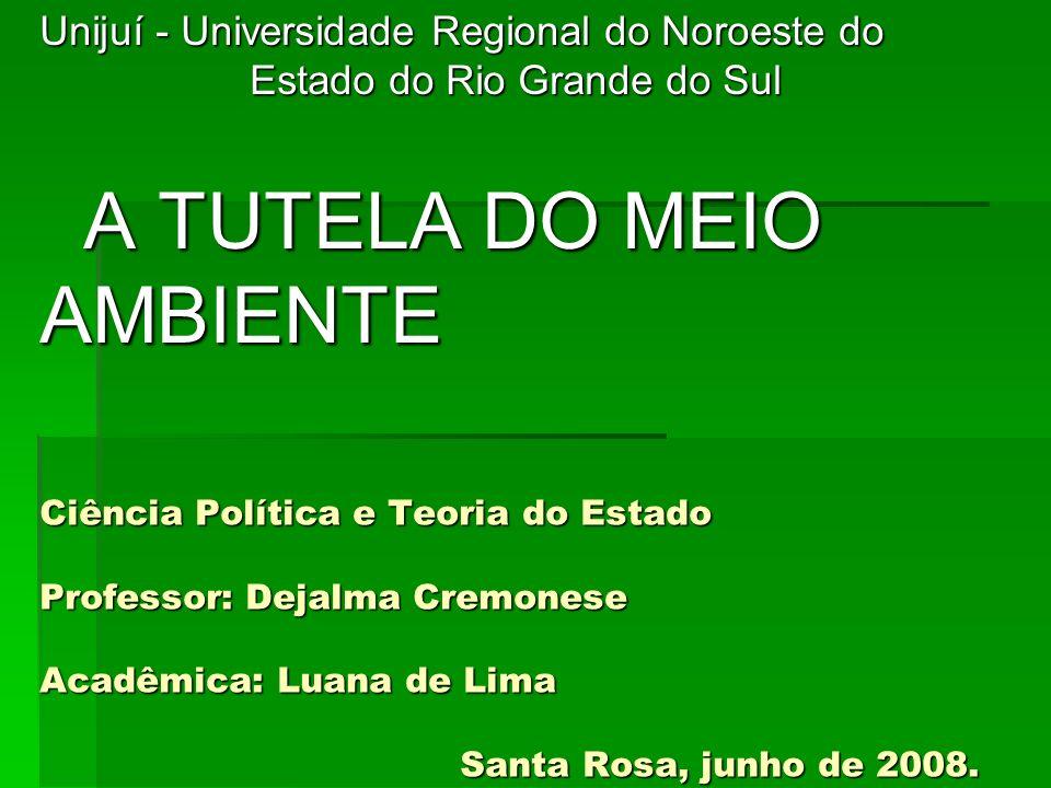 Ciência Política e Teoria do Estado Professor: Dejalma Cremonese Acadêmica: Luana de Lima Santa Rosa, junho de 2008. Unijuí - Universidade Regional do