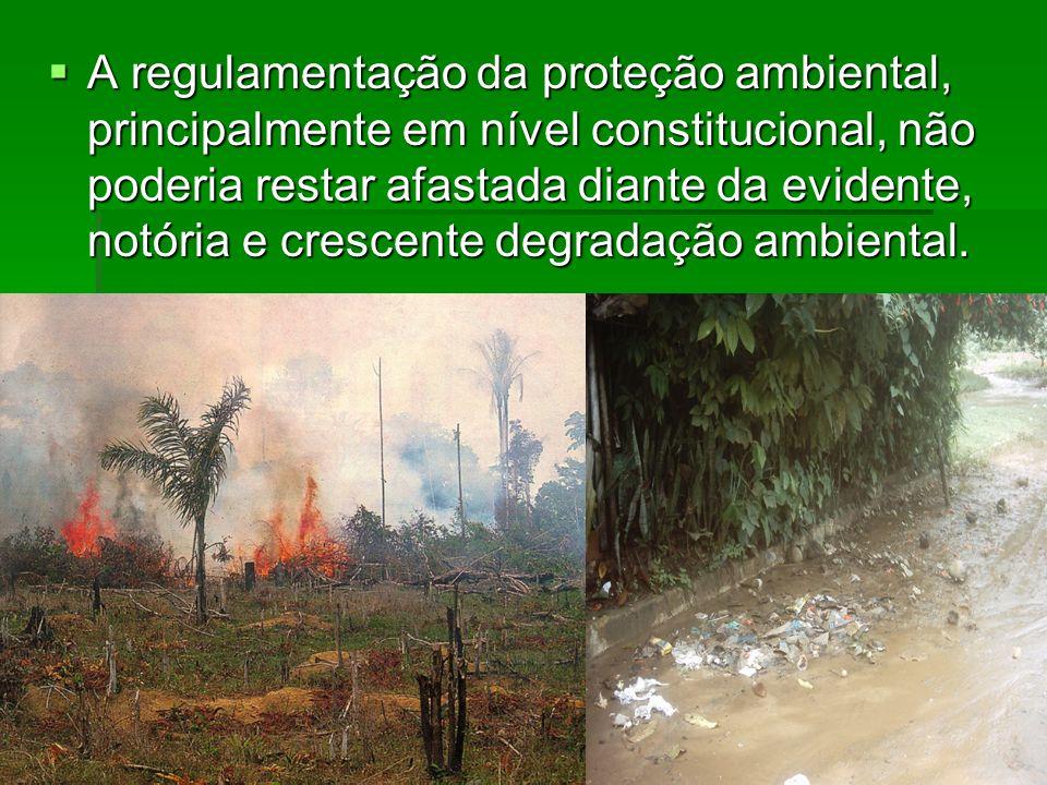 A regulamentação da proteção ambiental, principalmente em nível constitucional, não poderia restar afastada diante da evidente, notória e crescente de