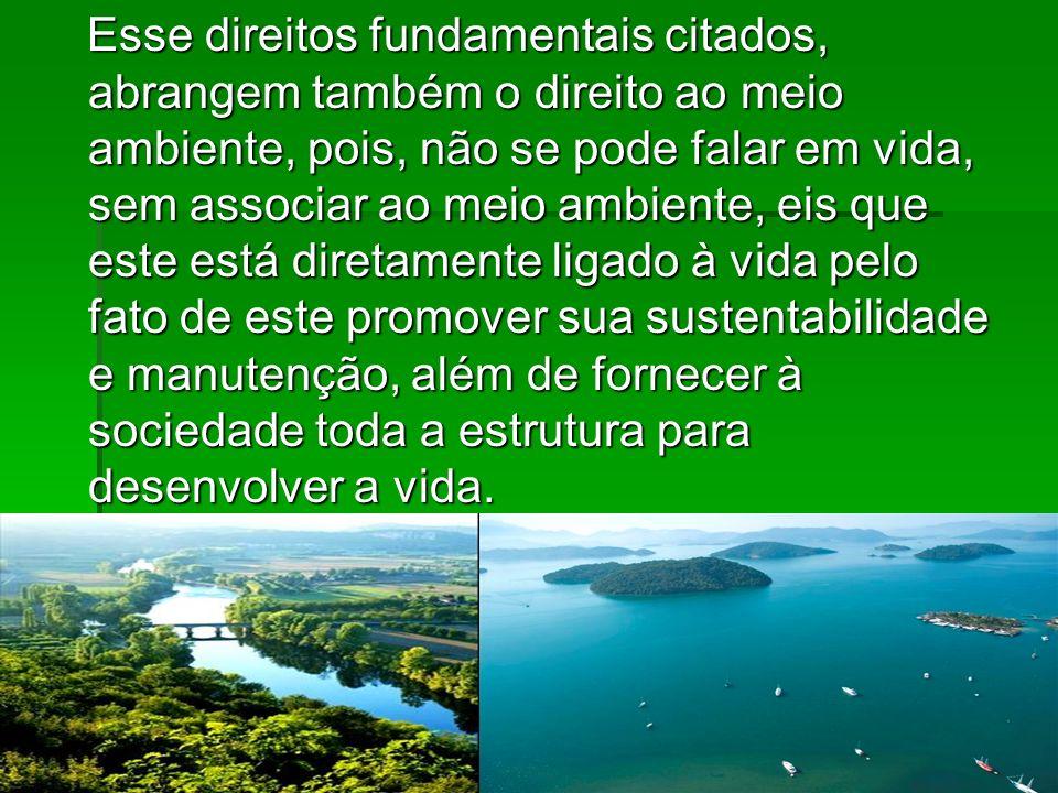 Esse direitos fundamentais citados, abrangem também o direito ao meio ambiente, pois, não se pode falar em vida, sem associar ao meio ambiente, eis qu