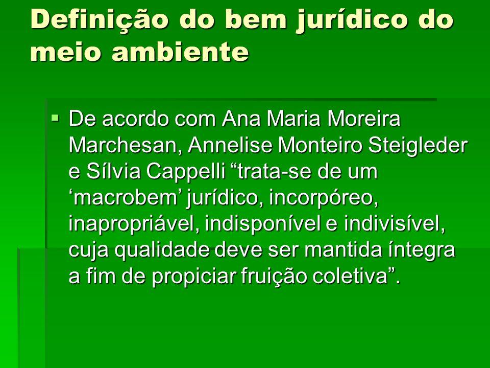 Definição do bem jurídico do meio ambiente De acordo com Ana Maria Moreira Marchesan, Annelise Monteiro Steigleder e Sílvia Cappelli trata-se de um ma