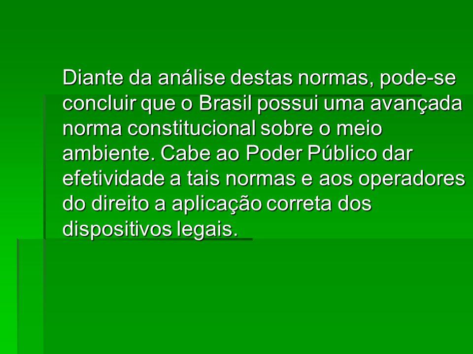 Diante da análise destas normas, pode-se concluir que o Brasil possui uma avançada norma constitucional sobre o meio ambiente. Cabe ao Poder Público d