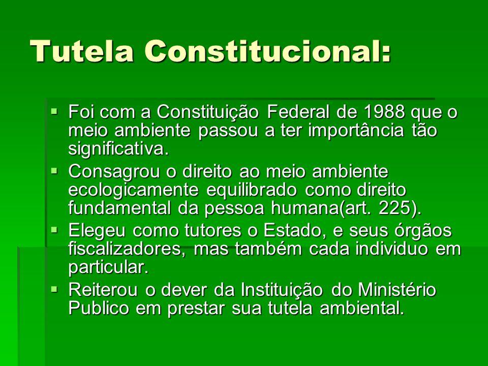Tutela Constitucional: Foi com a Constituição Federal de 1988 que o meio ambiente passou a ter importância tão significativa. Foi com a Constituição F