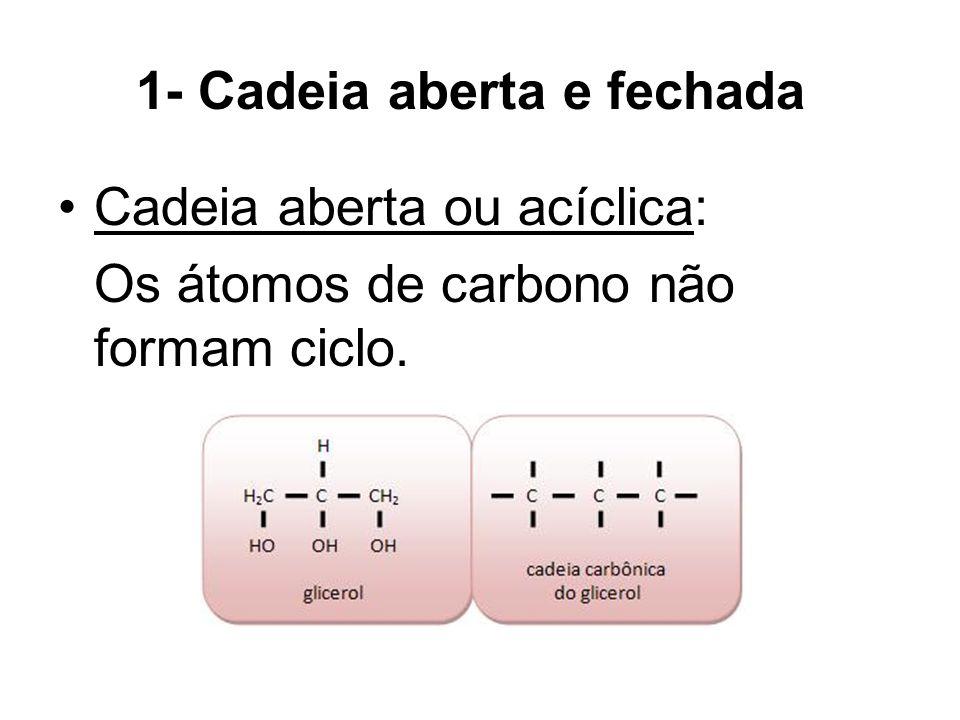 1- Cadeia aberta e fechada Cadeia aberta ou acíclica: Os átomos de carbono não formam ciclo.