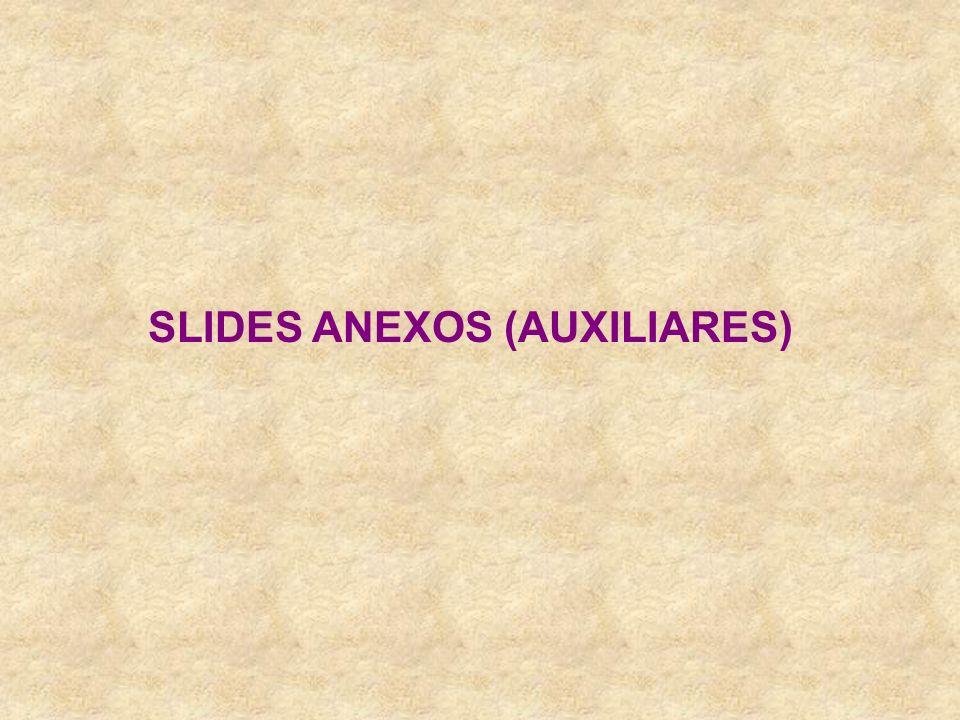SLIDES ANEXOS (AUXILIARES)
