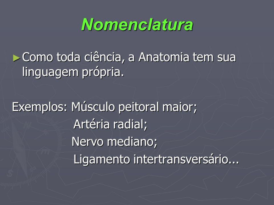 Nomenclatura Como toda ciência, a Anatomia tem sua linguagem própria. Como toda ciência, a Anatomia tem sua linguagem própria. Exemplos: Músculo peito