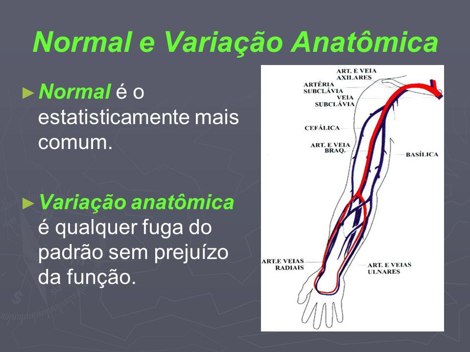 Normal e Variação Anatômica Normal é o estatisticamente mais comum. Variação anatômica é qualquer fuga do padrão sem prejuízo da função.