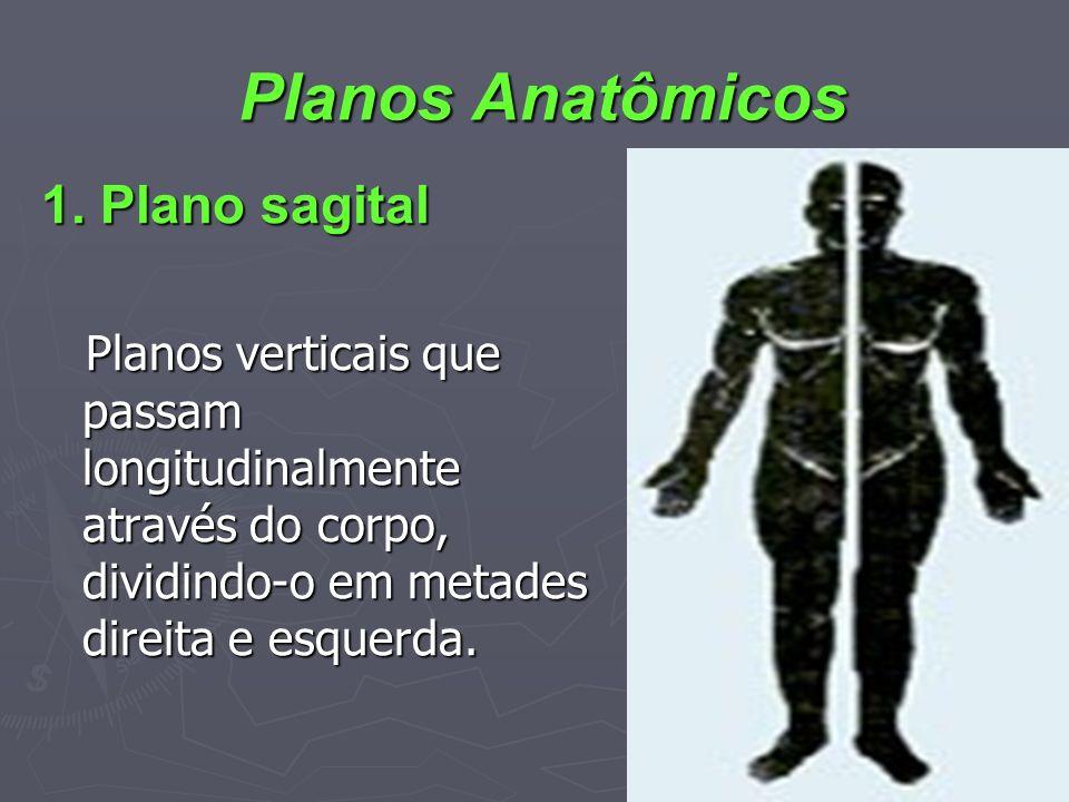 1. Plano sagital 1. Plano sagital Planos verticais que passam longitudinalmente através do corpo, dividindo-o em metades direita e esquerda. Planos ve