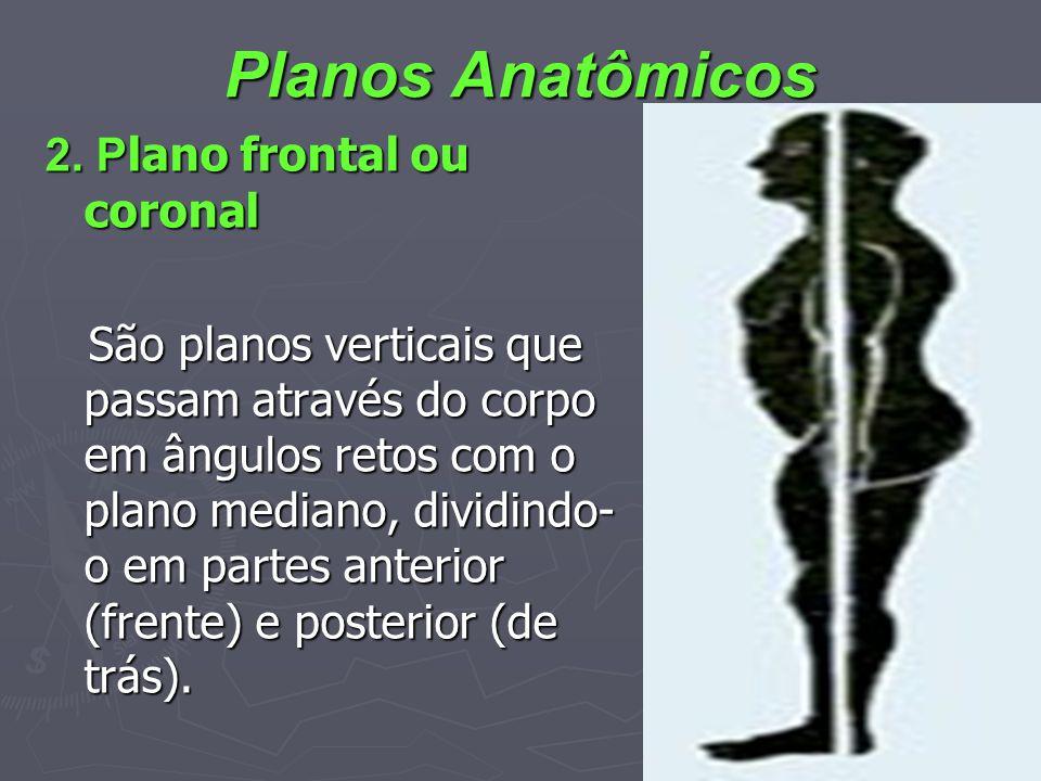 Planos Anatômicos 2. P lano frontal ou coronal São planos verticais que passam através do corpo em ângulos retos com o plano mediano, dividindo- o em