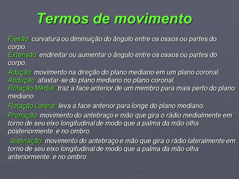 Termos de movimento Flexão: curvatura ou diminuição do ângulo entre os ossos ou partes do corpo. Extensão: endireitar ou aumentar o ângulo entre os os