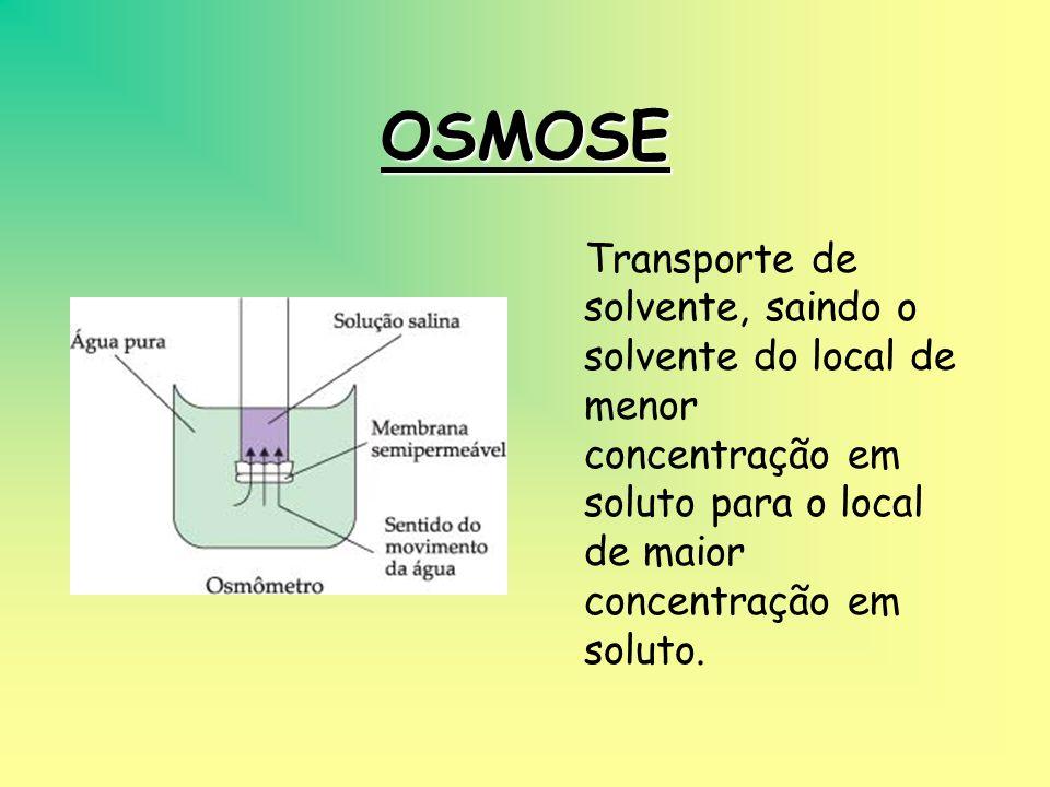 DIFUSÃO FACILITADA Permite o transporte de moléculas maiores como aminoácidos, monossacarídios, etc, que não conseguindo atravessar a bicamada lipídic