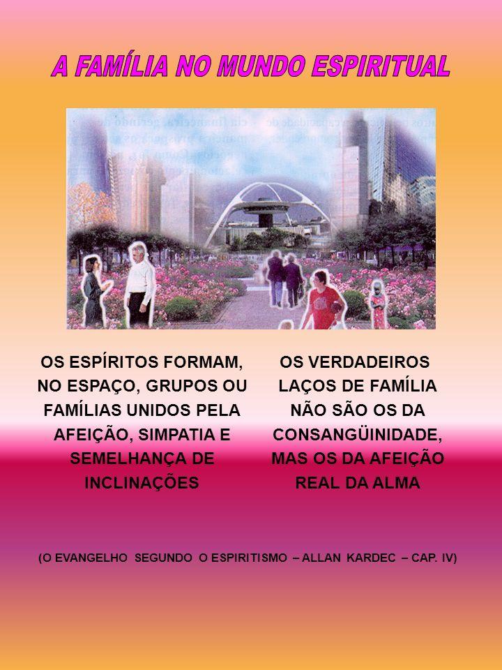OS ESPÍRITOS FORMAM, NO ESPAÇO, GRUPOS OU FAMÍLIAS UNIDOS PELA AFEIÇÃO, SIMPATIA E SEMELHANÇA DE INCLINAÇÕES OS VERDADEIROS LAÇOS DE FAMÍLIA NÃO SÃO O